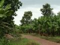 Mto Wam Bu en omgeving
