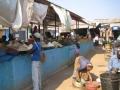 Omgeving Mosuma