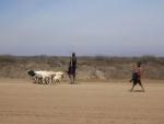 Boeren in Kenia