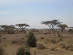 Landschap in Kenia